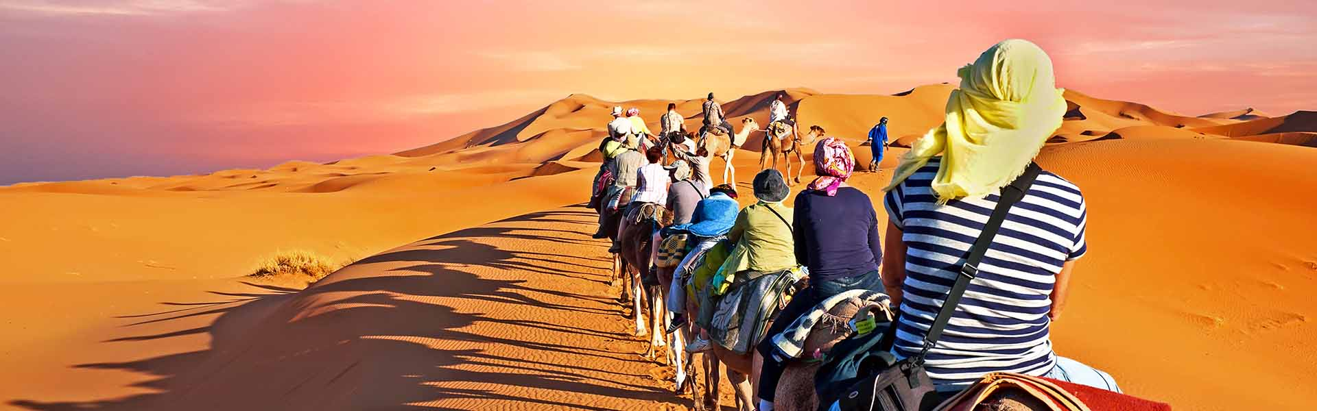 Wild and wonderful Morocco